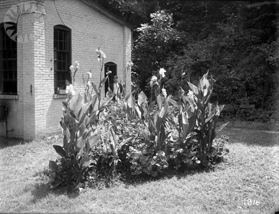Flower Beds at McRoberts.  From the Consolidation Coal Collection, Smithsonian National Museum of American History SI Neg. CCC-1916